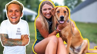 THE BIGGEST MISTAKES YOU CAN MAKE TRAINING YOUR DOG!