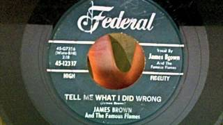 James Brown - Tell Me What I Did Wrong 45 rpm!