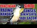Pancingan Burung Sirtu Cipoh Paling Handal Dan Sukses Bikin Sirpu Lain Jadi Gacor  Mp3 - Mp4 Download