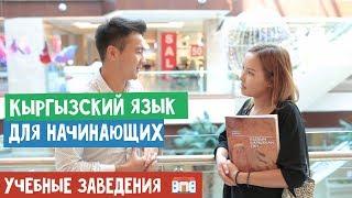 Кыргызский язык для начинающих | Учебные заведения