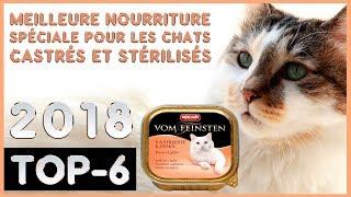 Meilleure 🔥 Nourriture Spéciale pour les Chats Castrés et Stérilisés 😸 TOP-6 🔥