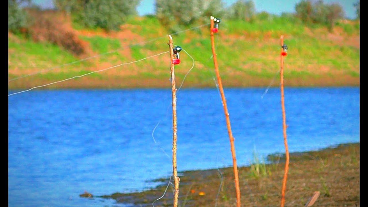 РЫБАЛКА НА ЗАКИДУШКИ. БЕШЕНЫЙ КЛЁВ КРУПНОГО КАРАСЯ. Рыбалка на жмых. Где и как поймать саранчу?