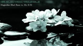 Mr. Electric Triangle - Magnolias