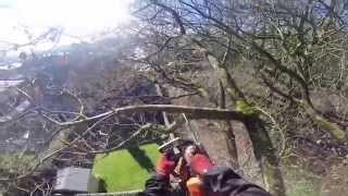 ash dismantle bmw treecare hd 1080p