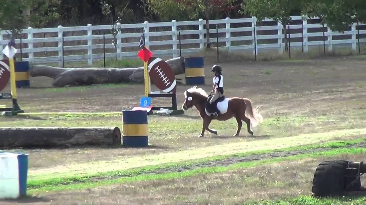 Taylor Prather And Willington At Rainbow Meadows Farm Derby Sept 2015 Youtube