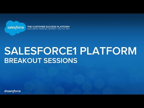 Salesforce Metadata API in Practice