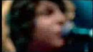 The Kooks - You Don't Love Me (TMF Show)