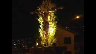 Señor de Luren - Cristo Nazareno Templo Santo Domingo: Semana Santa del Cusco