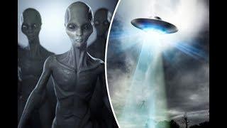 Инопланетяне на Земле – правда или вымысел?  Как выглядели пришельцы.