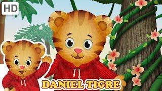 Daniel Tigre em Português - Todos os Melhores Momentos da 3ª Temporada (2+ Horas!)