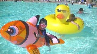 ニモ アヒル の うきわ プールで遊んだよ♫ お出かけ Nemo Duck float こうくんねみちゃん thumbnail