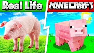 Minecraft In REAL LIFE (Items, Blocks, Animals)