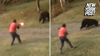 Grizzly bear takes shotgun blast at point-blank range and keeps charging | New York Post
