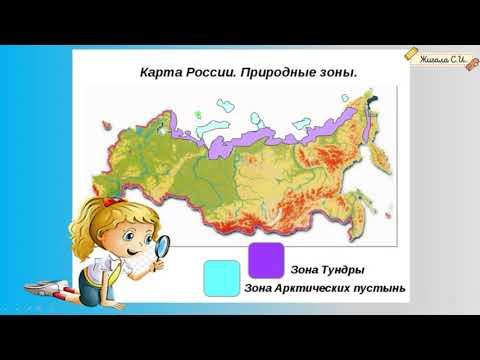 Видеоурок по окружающему миру 4 класс природные зоны россии