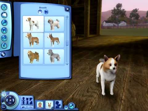 the-sims-3-pets:-small-dog-breeds