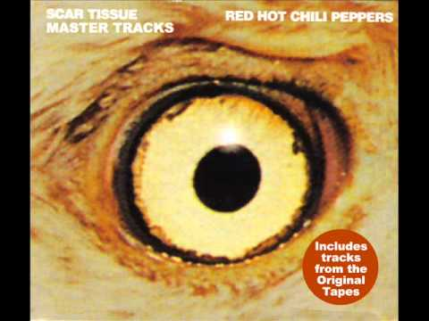Red Hot Chili Peppers - Scar Tissue (Instrumental)