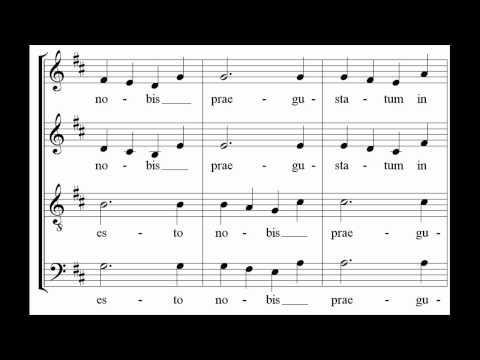 Mozart - Ave verum corpus - Les arts florissants
