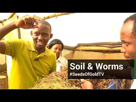 Soil - Seeds Of Gold TV Season 1 Episode 8