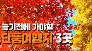 국내 가을 단풍 여행지 3곳 서울 근교 경기도편 늦기전…