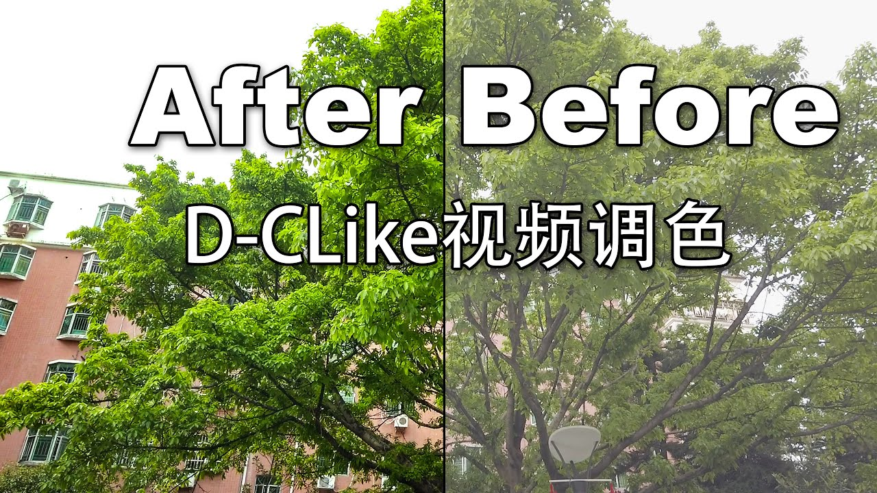 DJI OSMO POCKET D-CLike 原视频和后期调色对比