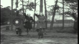 Allied armies including the Ninth United States Army fight and German citizens su...HD Stock Footage