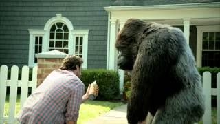 Gorilla Glue Tv Advert Questions