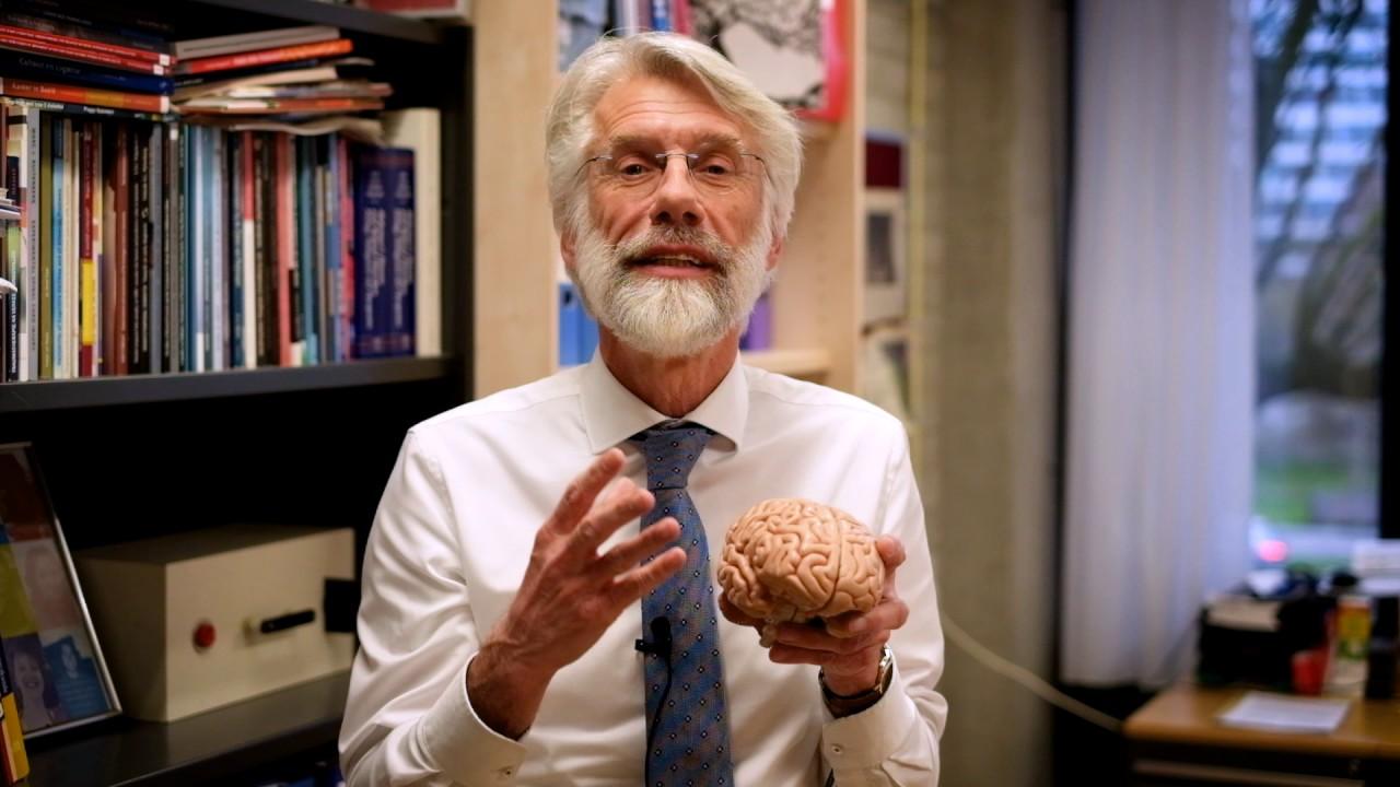 Erik Scherder   Waarom is wandelen goed voor je brein?