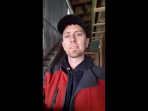 Insulation inspection during house renovation