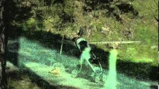 Strange Alien Stick-like creatures caught on security camera above Fresno in Yosemite.