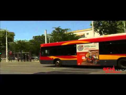Reportaje transportes públicos en Sevilla | Sevinfo Noticias