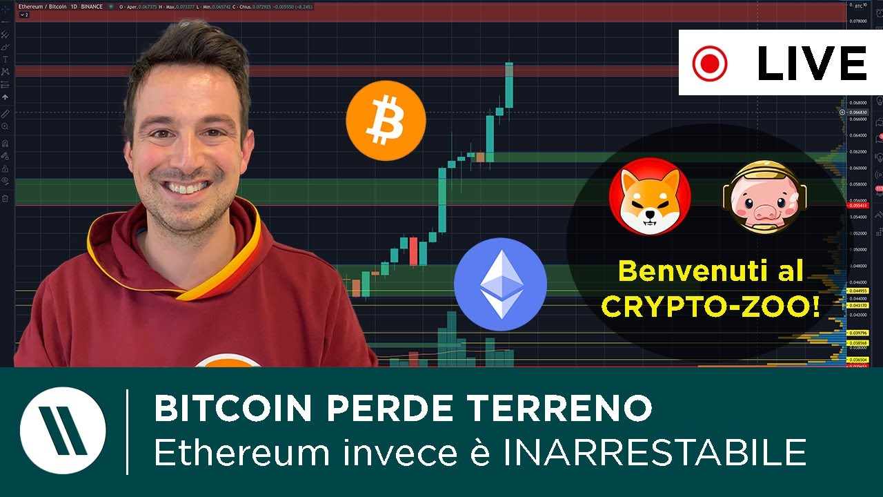il prossimo investimento in bitcoin chi regola le opzioni binarie