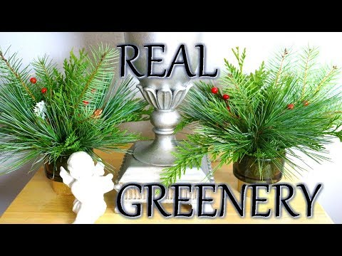 Real Greenery Christmas Centerpiece DIY