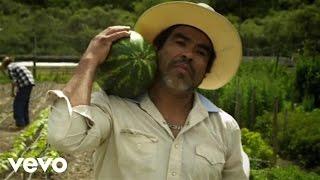 D.Willz - Watermelon