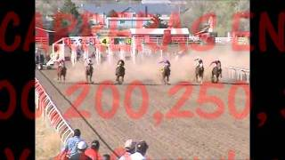 RANCHO EL PALOMINO DODGE CITY KS LABERINTO PROMO.