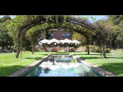 the-vintage-estate---wine-country-weddings-in-napa-valley