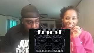 Download Tool- The Pot w/lyrics Reaction Mp3 and Videos