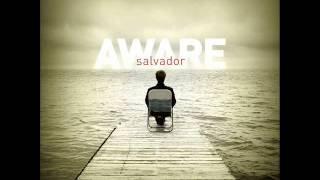 Video Salvador - Fly Away download MP3, 3GP, MP4, WEBM, AVI, FLV Desember 2017