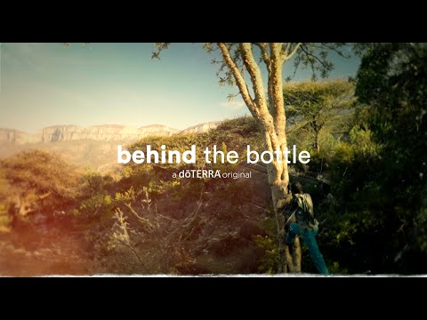 behind-the-bottle-|-frankincense-essential-oil