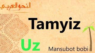 46 <b>Tamyiz</b>