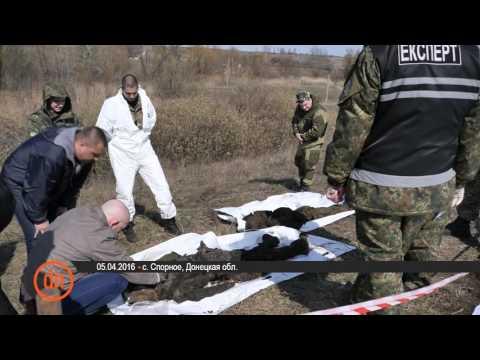 Неизвестный застрелил бизнесмена на парковке гостиницы в Киеве, - Нацполиция - Цензор.НЕТ 8279