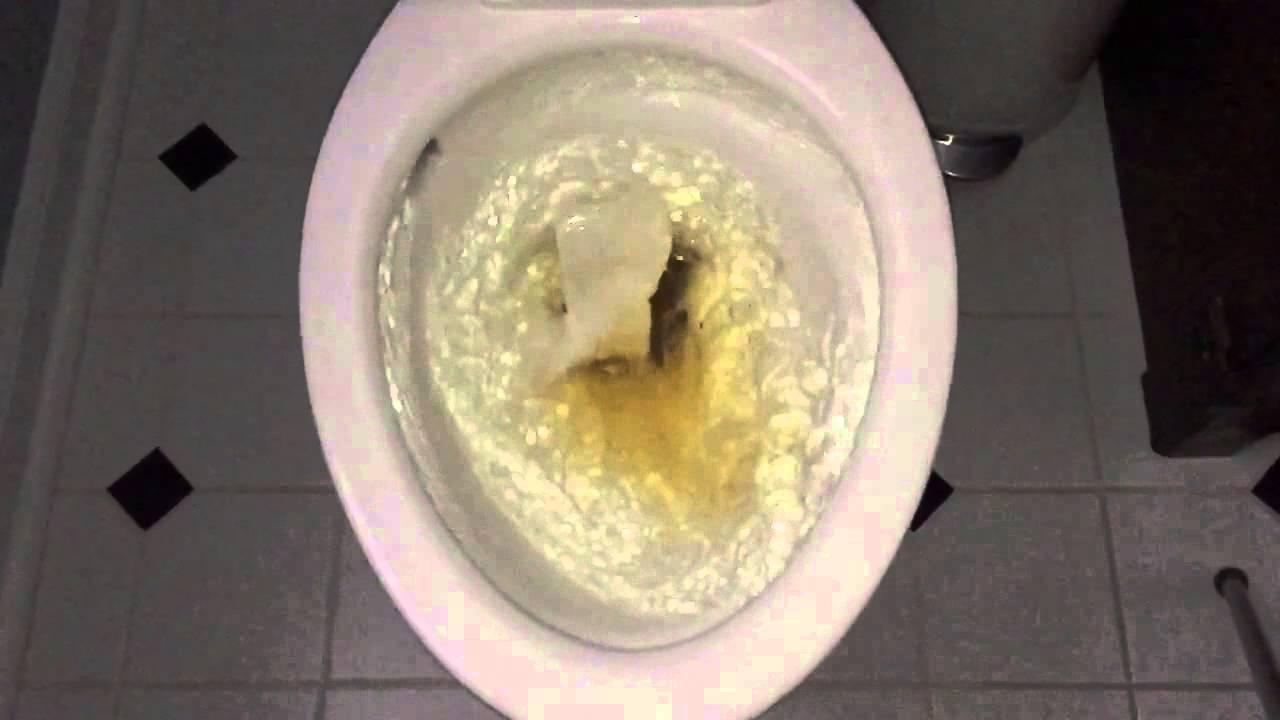 American Standard Optum Vormax Toilet Fail 240fps