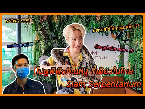 Vloging at Bangkok