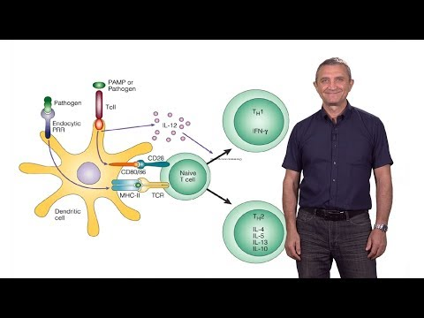 Ruslan Medzhitov (Yale / HHMI): The Role of Toll-Like Receptors in the Control of Adaptive Immunity