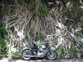 [Slow TV] Motorcycle Ride - Hong Kong - Tin Hau to Lam Tei