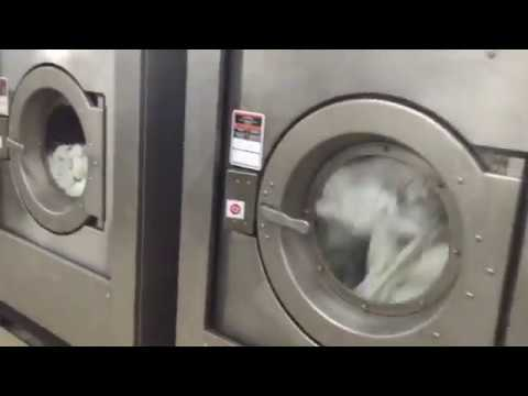 How Commercial Laundry Do Process