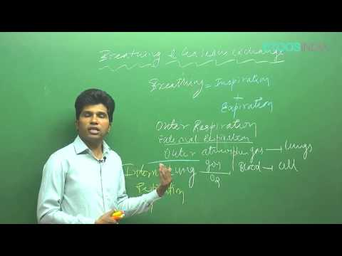Breathing Exchange of Gases by M. Asad Qureshi (MAQ) sir (ETOOSINDIA.COM)