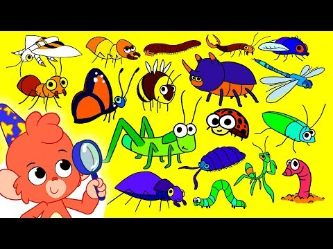 Insects ABC   Animal ABC   Learn the alphabet with Insects and Bugs   Club Baboo