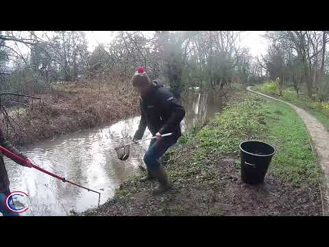 Barbel Stocking - Wetherby Angling Club Waters