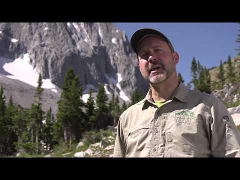 Mountain Safety: The Deadliest Colorado 14ers