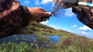 Ловля щуки на джиг на Малой реке Рыбалка на спиннинг осенью 2021